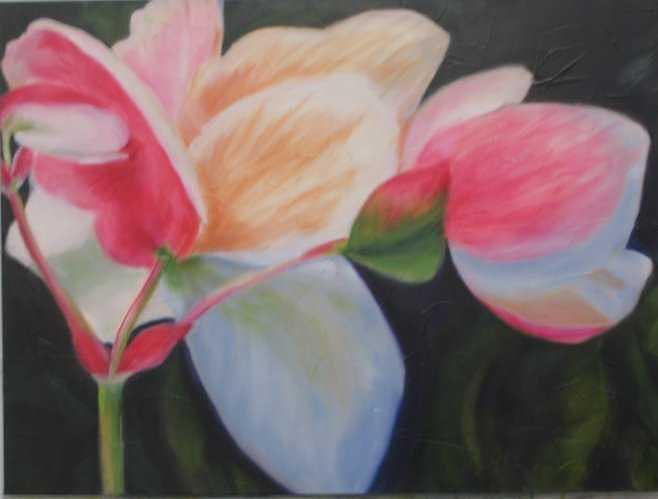 B.c. Begonia Painting by Selma Cooper