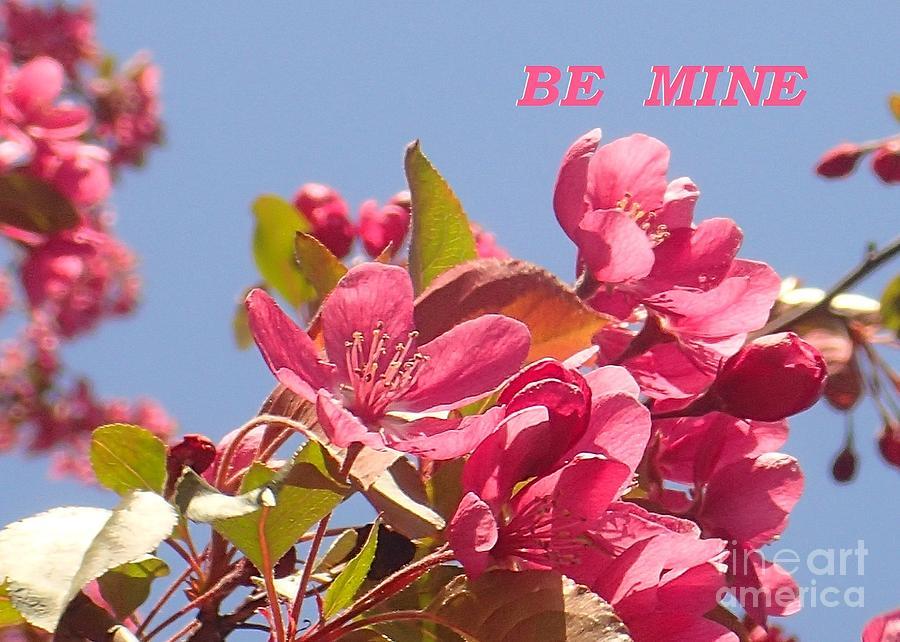 BE MINE cherry by Christina Verdgeline