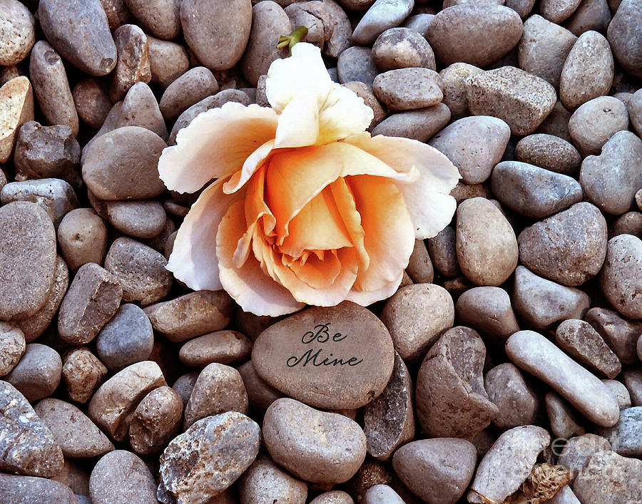 Diane Berry Photograph - Be Mine  by Diane E Berry