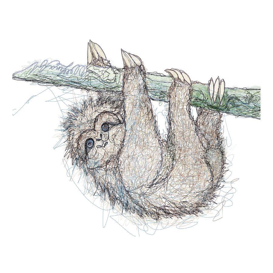 Be Slothful Slow Down Digital Sketch Of Sloth  by OLena Art Brand