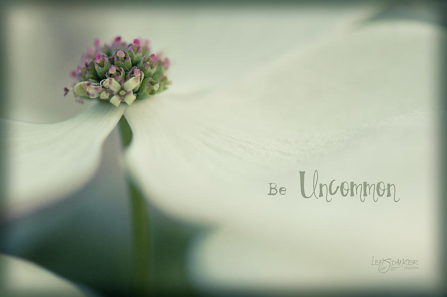 Be Uncommon by Joy Gerow