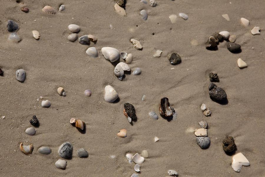 Beach 1121 by Michael Fryd