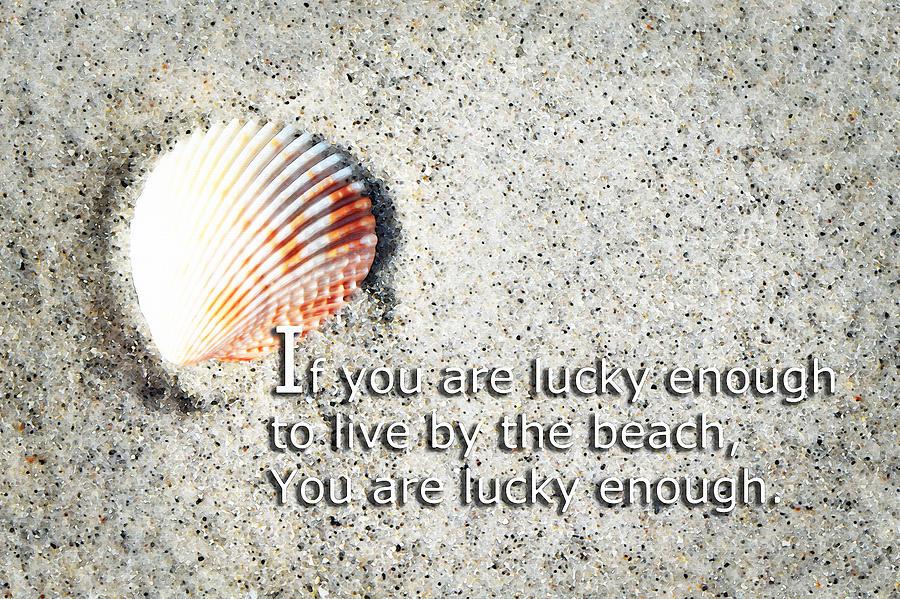 Beach Painting - Beach Art - Lucky Enough - Sharon Cummings by Sharon Cummings