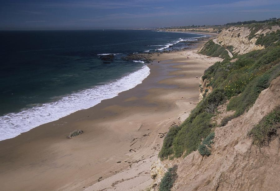 Beach Photograph - Beach Beachcombers And Wildflowers by Don Kreuter