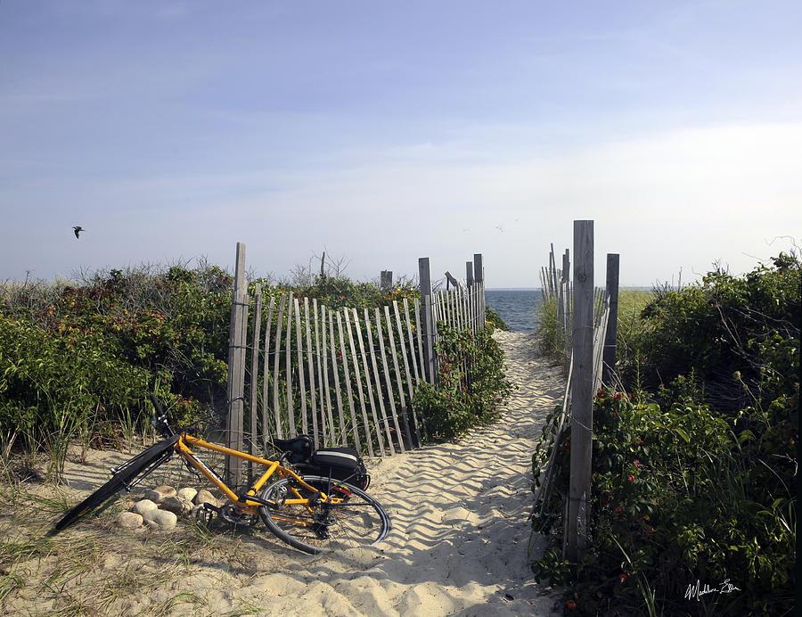 Beach Bicycle Rest by Madeline Ellis