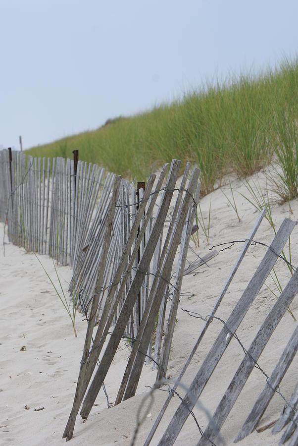 Summer Photograph - Beach Border by Patricia M Shanahan
