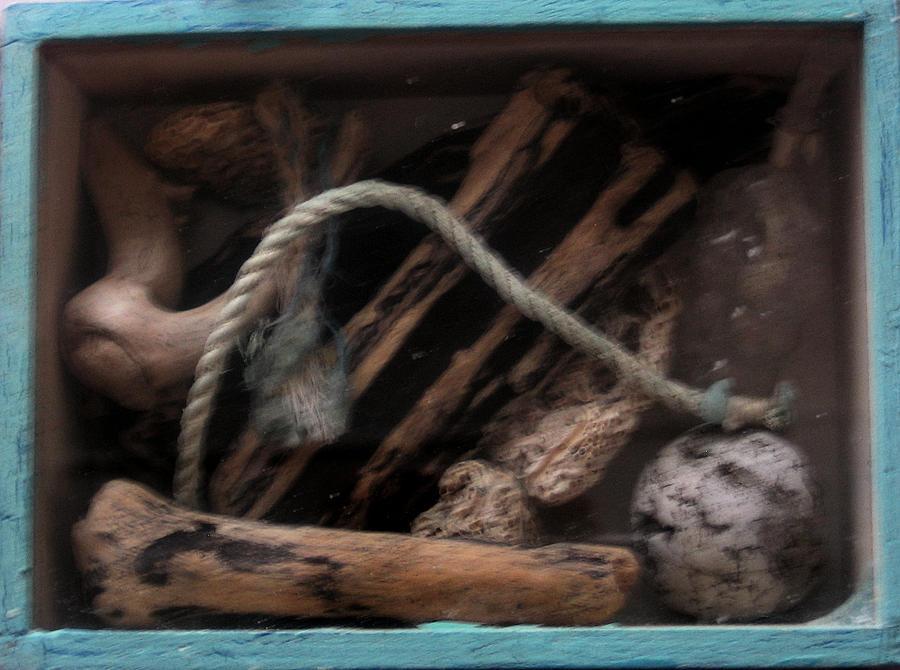 Driftwood Sculpture - Beach Box I by Adam Kissel