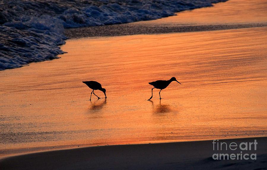 Beach Photograph - Beach Couple by David Lee Thompson