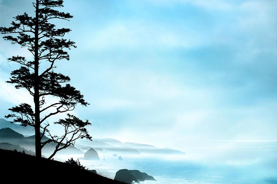 Oregon Coast Photograph - Beach Dreams On The Oregon Coast by Debi Bishop
