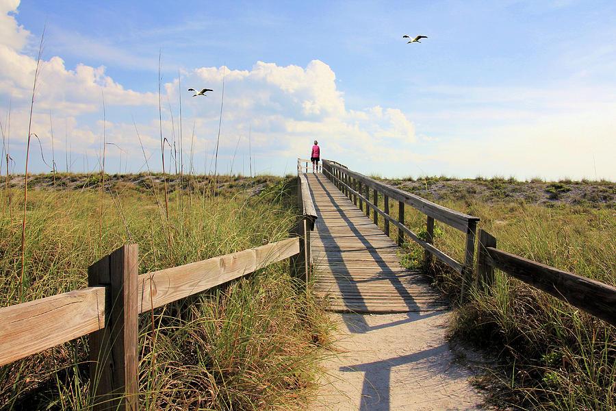 Entrance Photograph - Beach Entrance by Rosalie Scanlon