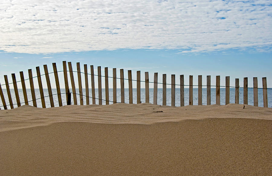 Wood Photograph - Beach Fence by Maria Dryfhout