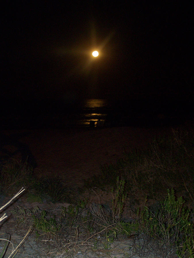 Moon Photograph - Beach Full Moon by Patricia Taylor