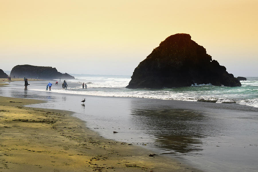 Beach Goers Photograph