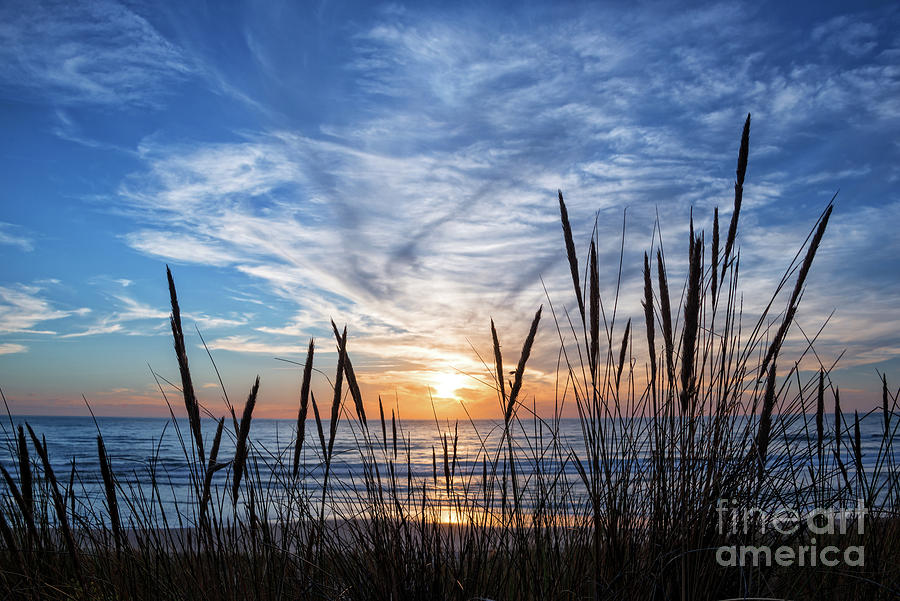 Sunset Photograph - Beach Grass by Delphimages Photo Creations