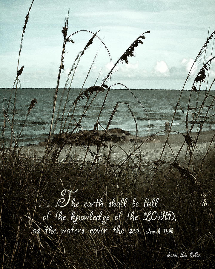 Beach Digital Art - Beach Grass Oats Isaiah 11 by Janis Lee Colon