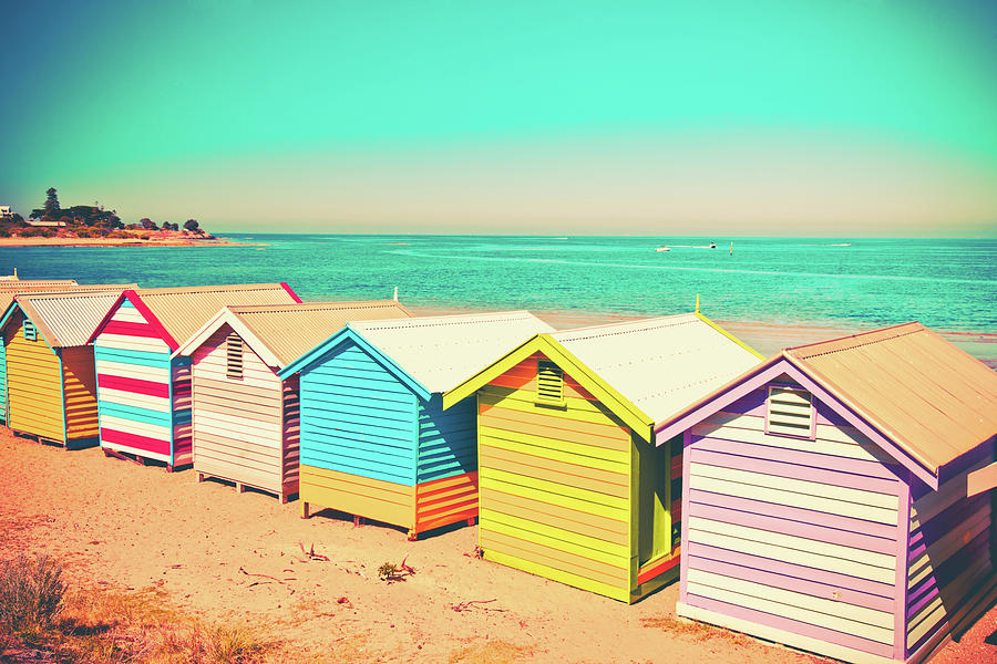 Beach Huts Of Brighton Photograph