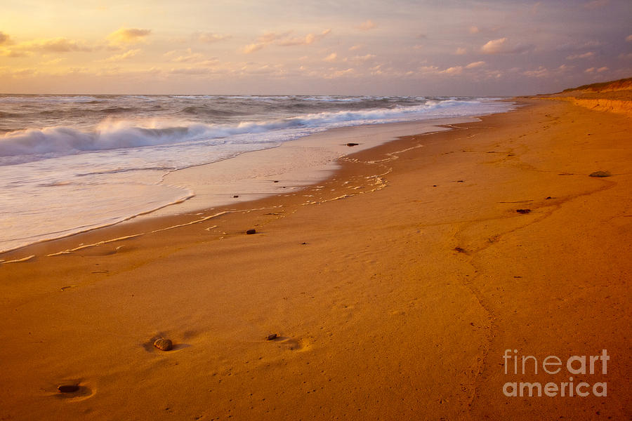 Beach Photograph - Beach Impressions by Susan Cole Kelly