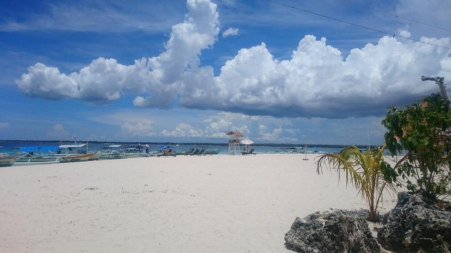 Beach Mixed Media - Beach Life  by Katherine Anne Densing