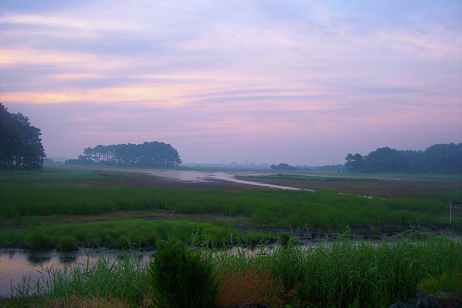 Photograph - Beach Marsh Sunrise - 14 by Donovan Hubbard