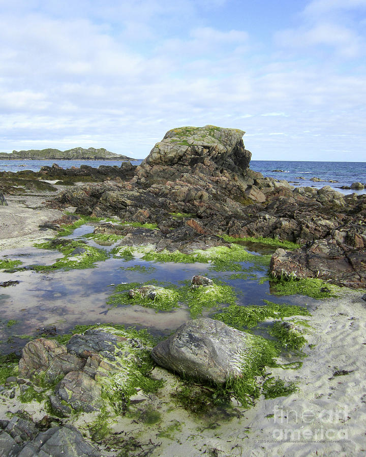 Scotland Photograph - Beach On Iona by Katrina Perekrestenko
