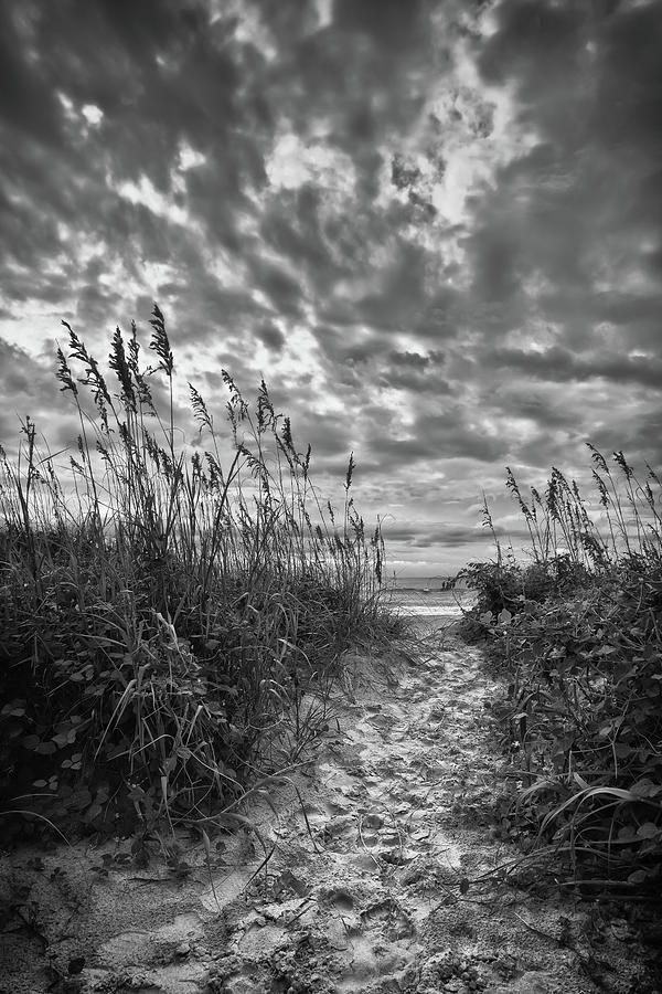 Beach Path by DENIS LEMAY