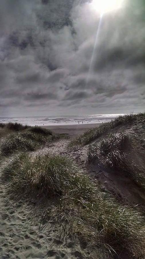 Beach path by Shari Chavira