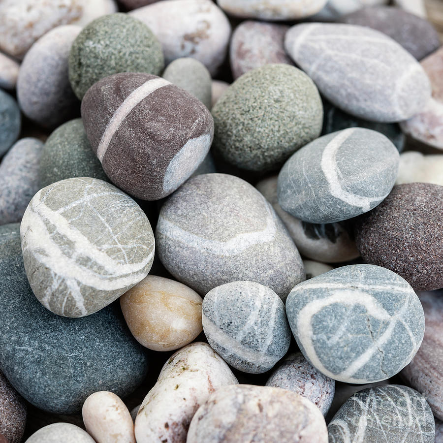 Beach pebbles close up by Elena Elisseeva