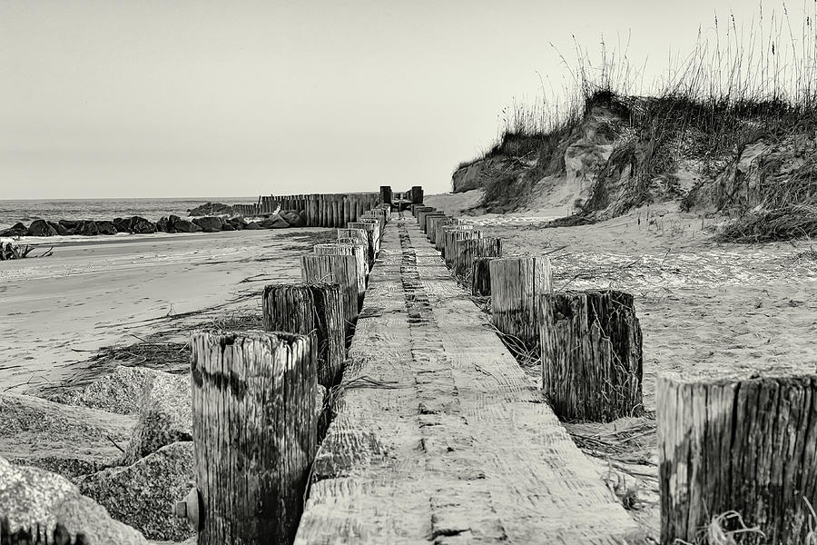 Beach Pilings by Patricia Schaefer