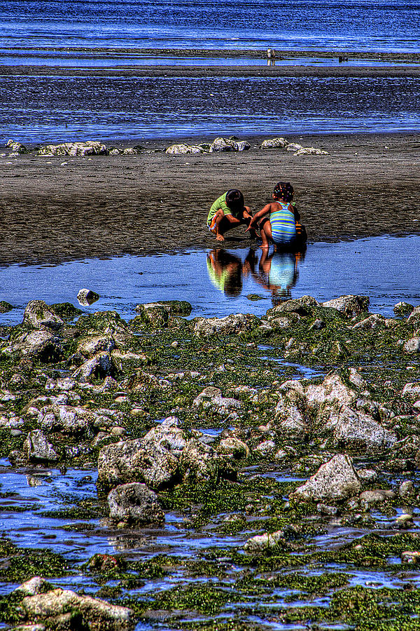 Discovery Park Photograph - Beach Play by David Patterson