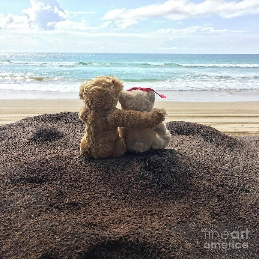 ROMANTIC BEARS TEDDY BEAR PRINTS
