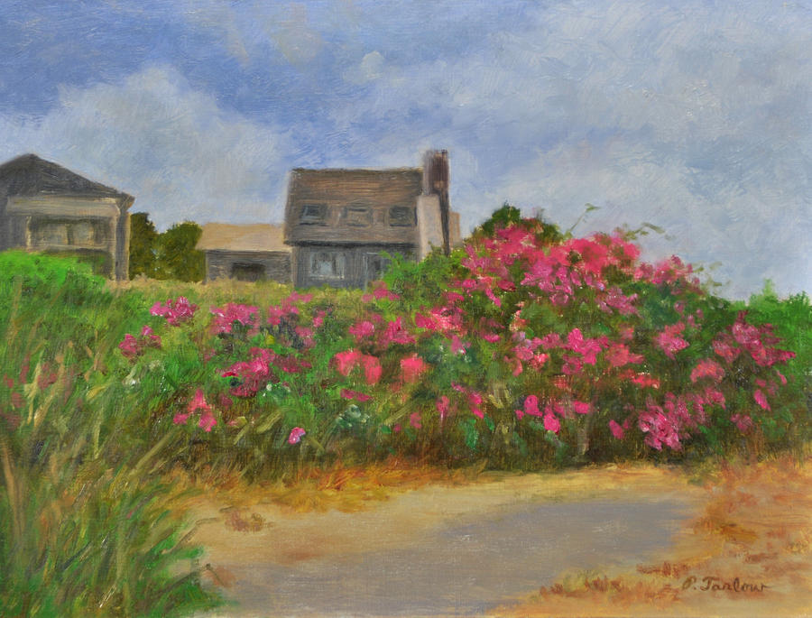 Landscape Painting - Beach Roses and Cottages by Phyllis Tarlow