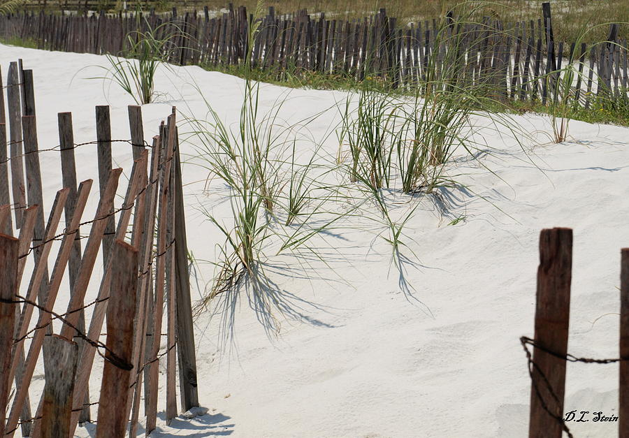 Beach Photograph - Beach Scene by Dennis Stein