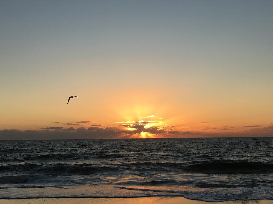 Sunrise Photograph - Beach Sunrise by Paul Lavoie