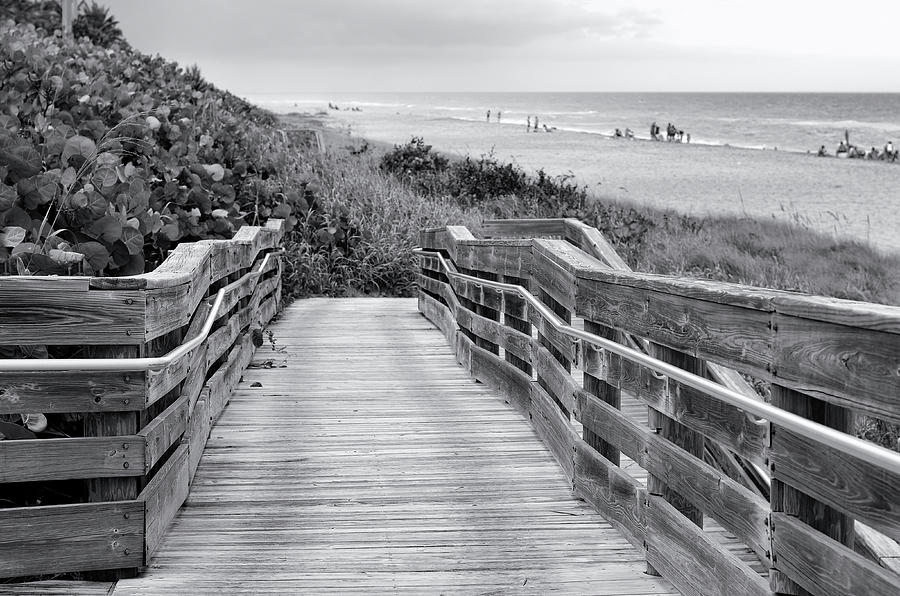 Beach Walk - black and white by Laura Fasulo