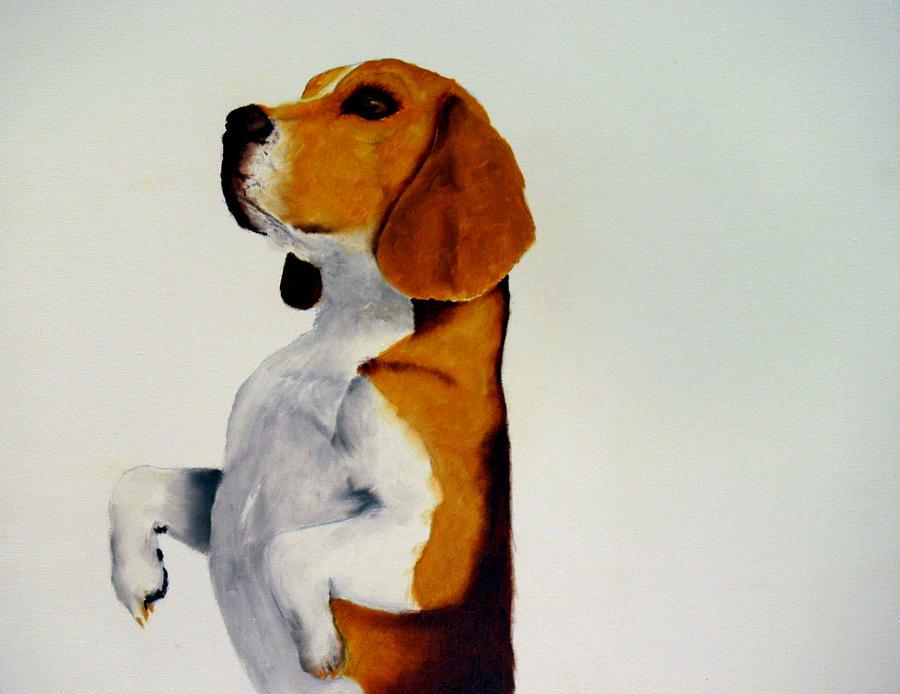 Beagle Painting - Beagle by Dick Larsen