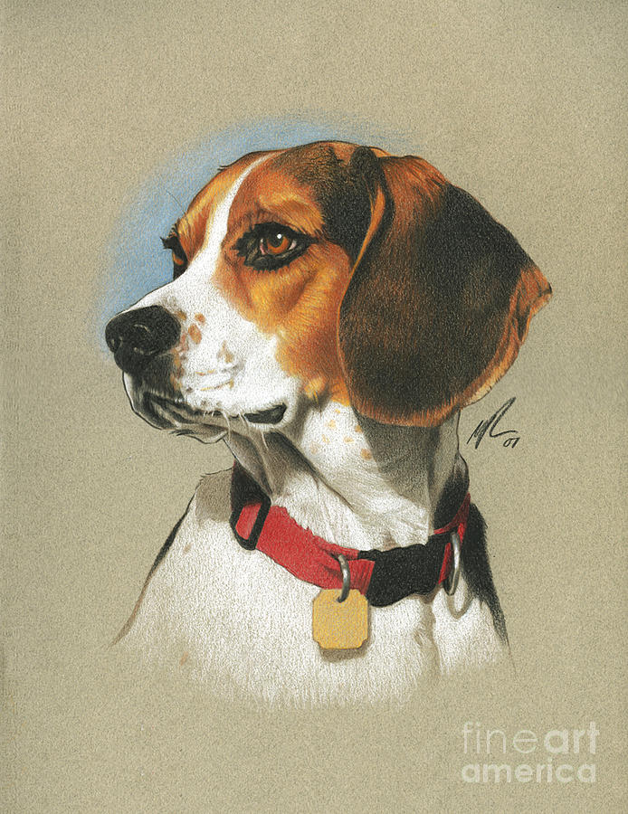 Beagle Painting by Marshall Robinson