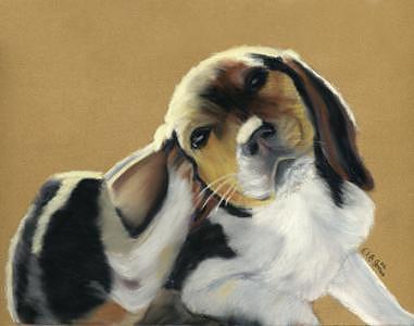 Dog Painting - Beagle Pup by Elizabeth Jones