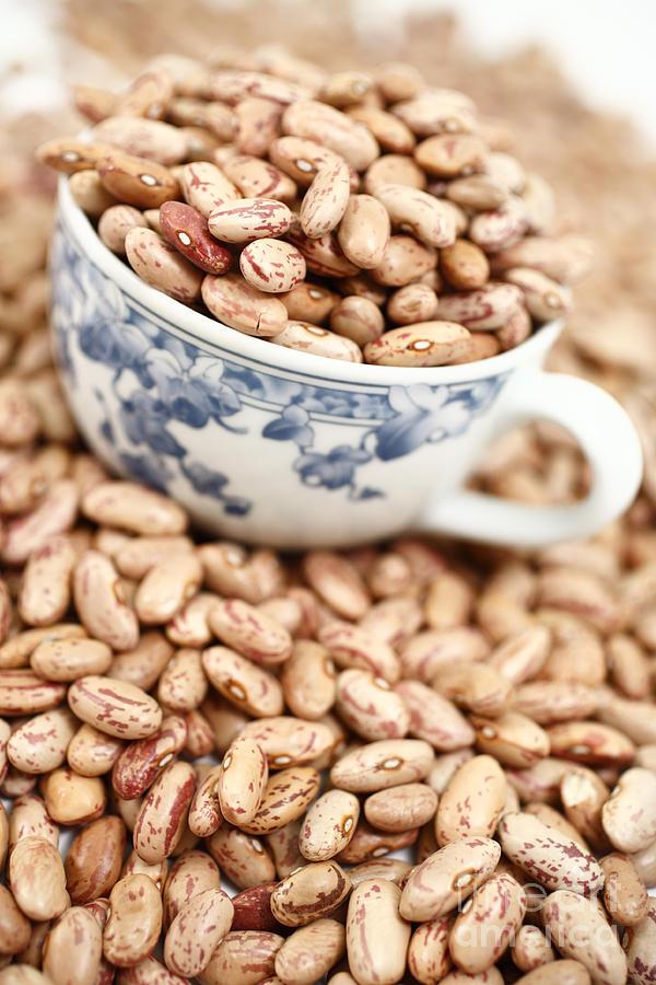 Beans Photograph - Beans In A Cup by Gaspar Avila