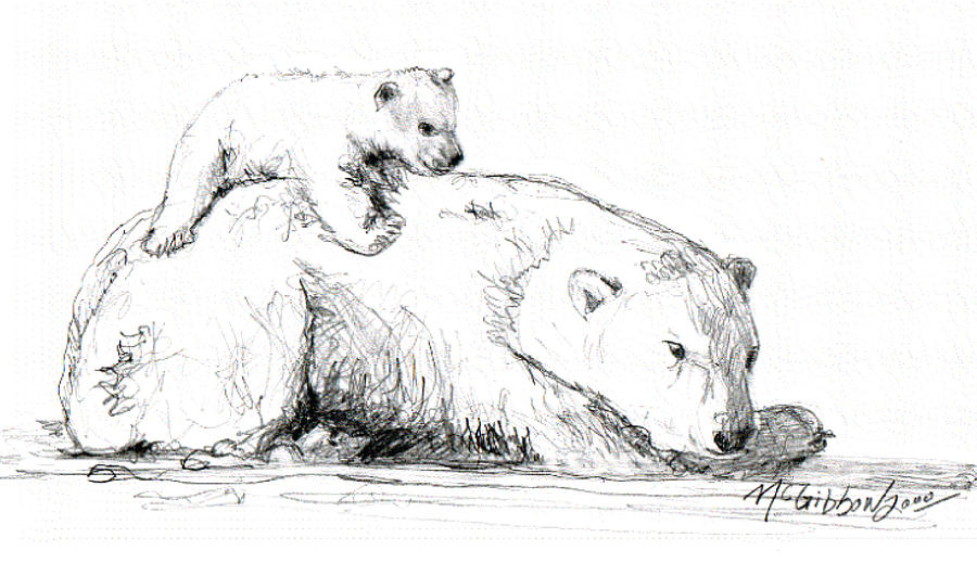 Pencil Sketch Drawing - Bear And Cub by Dan McGibbon