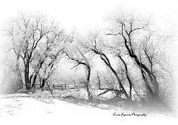 Winter Photograph - Bear Creek Park by Ernie Ferguson