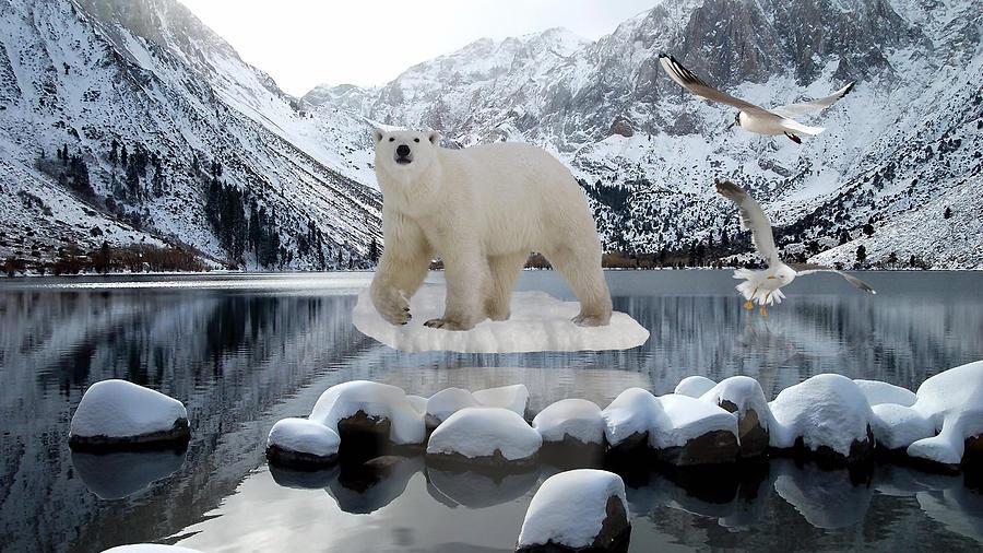 Bear On Ice Mixed Media