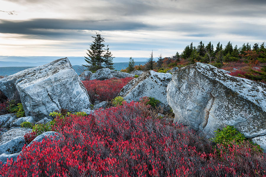 West Virginia Photograph - Bear Rocks Preserve West Virginia by Mark VanDyke