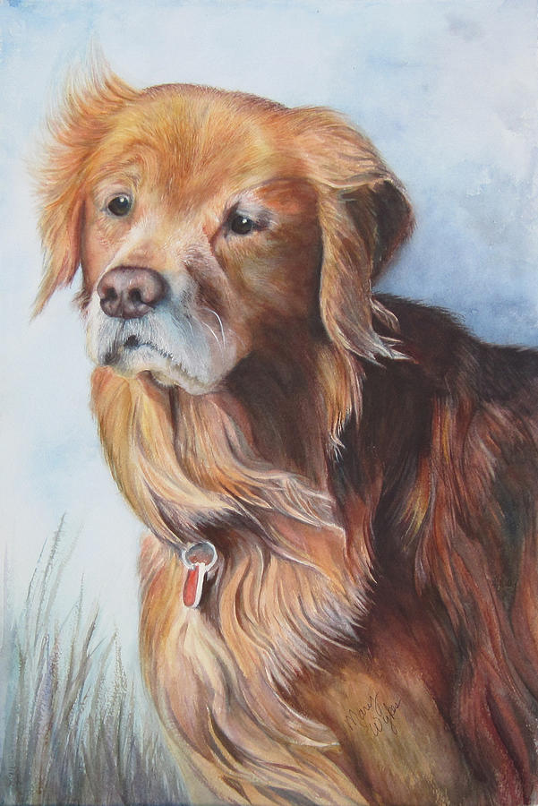 Labrador Retriever Painting - Beau by Mary Beglau Wykes