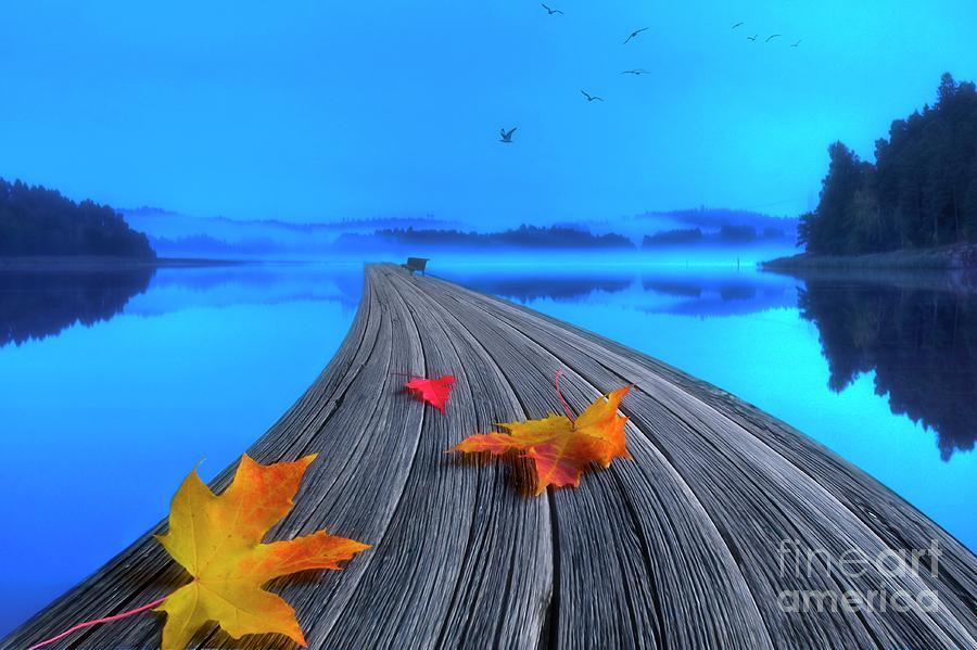 Artist Photograph - Beautiful Autumn Morning by Veikko Suikkanen