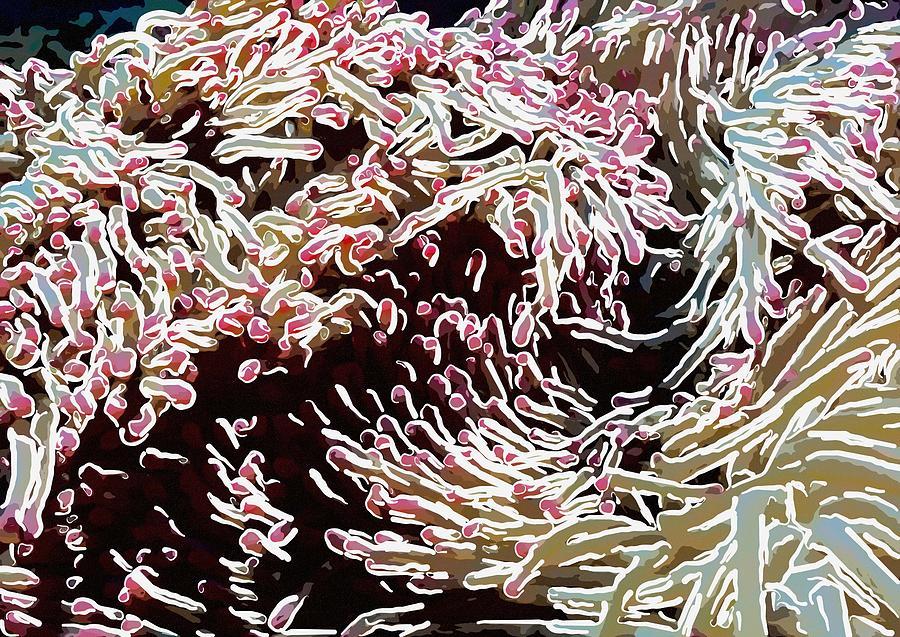 Starfish Painting - Beautiful Coral Reef  1 by Lanjee Chee