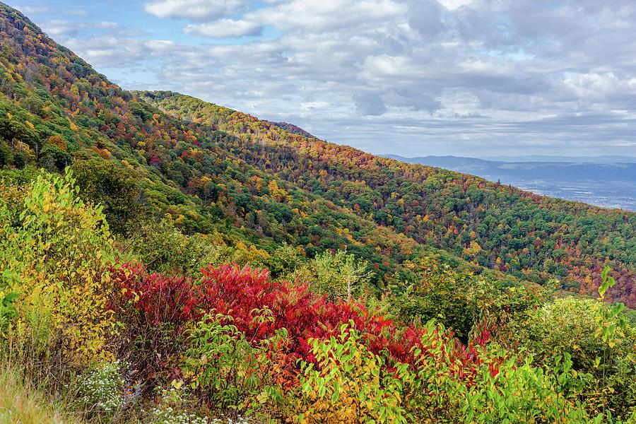Beautiful Fall Foliage in the Blue Ridge Mountains by Lori Coleman
