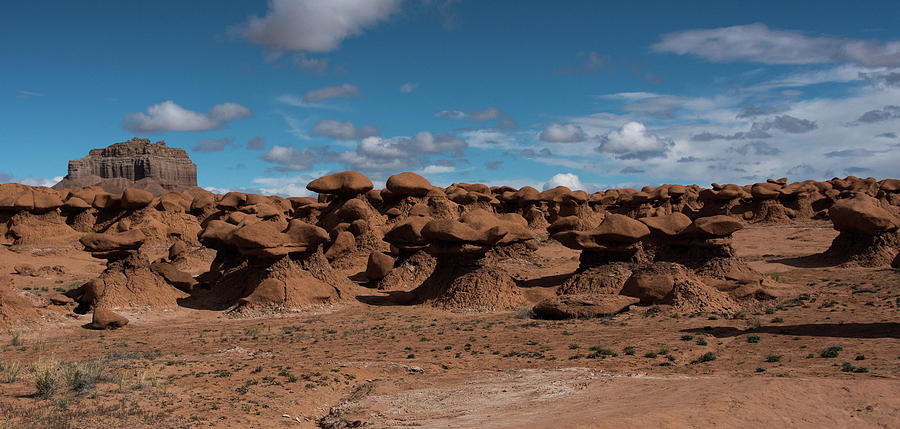 Beautiful Goblin Valley by Jennifer Ancker