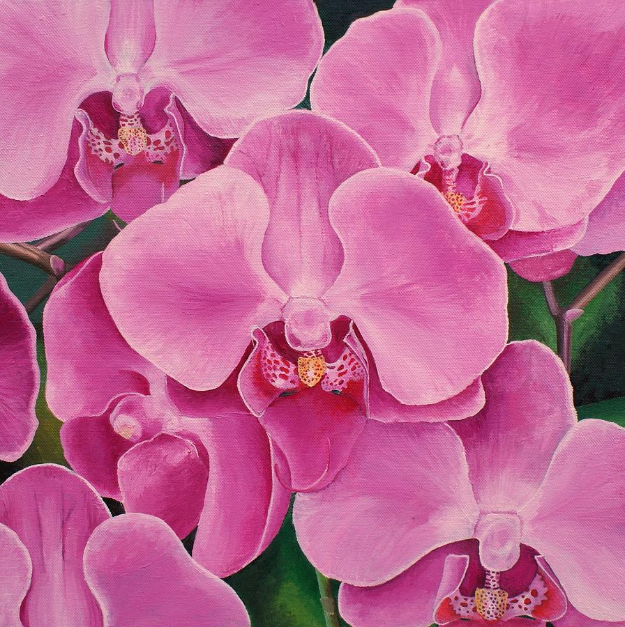 Beautiful Orchids Painting by Samuel Harrison