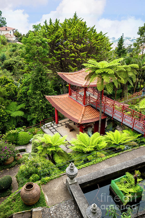 Beautiful Pagoda In Tropical Garden Photograph by Brenda Kean