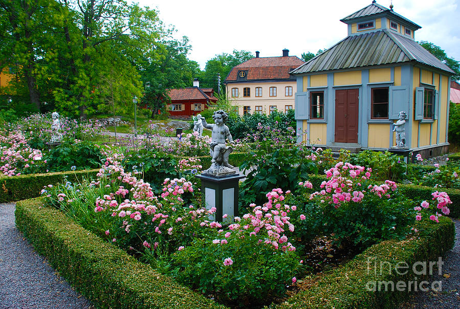 Beautiful Rose Garden At Skansen Sweden Photograph By Just Eclectic